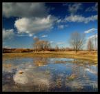 """pawello91 """"Rozlewisko....."""" (2010-03-12 20:19:38) komentarzy: 12, ostatni: ładne wiosenne ... a u mnie dalej zima ..."""