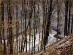 """koszmar69 """"Ostatnie podrygi Złej Pani Zimy  # 2 :)"""" (2010-03-13 18:11:47) komentarzy: 5, ostatni: wstęga w lesie rozciągnięta ..."""