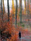 """Wołodytjowski """"Jesienno - wiosenna impresja i Ty"""" (2010-04-03 21:42:52) komentarzy: 12, ostatni: Olejowy pastel, lubię takie prace."""