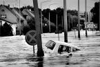 """Zbigniew Woźniak """"Potop"""" (2010-04-07 22:54:10) komentarzy: 43, ostatni: Fajne znaki... :))"""