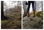 """razor_71 """"Forest_explorations"""" (2010-04-20 22:00:35) komentarzy: 1, ostatni: do mnie to bardzo trafia! super :)"""