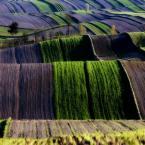 """lukier """"jak sztorm ..."""" (2010-04-27 21:18:19) komentarzy: 45, ostatni: jak mój turecki dywan ;) świetne :)"""