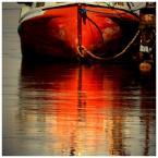 """papajedi """"dzób w wodzie"""" (2010-04-29 16:18:44) komentarzy: 9, ostatni: naj...światło...to lustro jest best."""