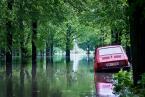 """K_rzychu """"deszcz"""" (2010-05-18 21:33:13) komentarzy: 19, ostatni: +++"""