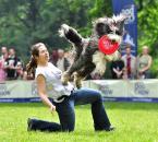 "myszok ""latające psy..."" (2010-05-29 19:50:11) komentarzy: 8, ostatni: dobre"