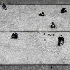 """mikerus """"Ludzie vs. gołębie"""" (2010-06-02 21:32:57) komentarzy: 12, ostatni: super:)"""