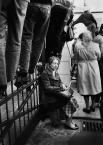 """Zbigniew Woźniak """"Samotność w tłumie"""" (2010-06-09 21:43:17) komentarzy: 73, ostatni: schody.... do nieba.........wszystkie tyłem stoją.....nie ma...ciche, odosobnione   smutne"""