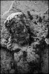 "kiwer ""corrupted jesus"" (2010-06-09 22:02:29) komentarzy: 3, ostatni: !!!"
