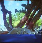 """emolka """"Playa Zaragoza"""" (2010-06-10 22:25:51) komentarzy: 18, ostatni: Na obiad czy na margaritańską plażę? ;)"""