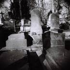 "hunting_bears """" (2010-06-21 10:18:56) komentarzy: 1, ostatni: na cmentarku ja sem zly"