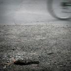 """Borkosia """"zdecydowanie martwa natura"""" (2010-06-30 00:42:01) komentarzy: 2, ostatni: super jest ;)"""
