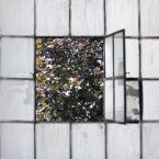 """daniel8 """"."""" (2010-07-14 22:15:20) komentarzy: 2, ostatni: dobre......jak z filmu...""""okno na podwórze""""tylko tam rosły pomidory.../"""