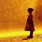 """zbigniew-en """"........w złotym deszczu stojąc...;)"""" (2010-07-19 20:45:34) komentarzy: 127, ostatni: czemu nie, jak Ci to daje radość"""
