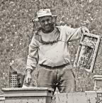"""Slawekol """"*   *   *"""" (2010-07-21 13:18:06) komentarzy: 8, ostatni: pszczoła mnie nie rusza....bdb./"""