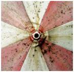 """AGANO """""""" (2010-07-28 12:41:27) komentarzy: 10, ostatni: ...jest foto... ;)))"""