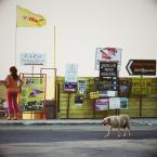 "justyna-sin ""Kreta"" (2010-07-31 23:08:56) komentarzy: 9, ostatni: bardzo"