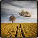 """klimat """""""" (2010-08-01 21:40:55) komentarzy: 26, ostatni: jak z obrazów magruitte'a :)"""