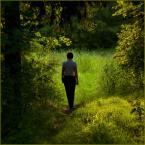 """Wołodytjowski """"Na progu Edenu"""" (2010-08-10 16:59:26) komentarzy: 4, ostatni: ...może przeciętne ale na pewno nie pstryczek :)"""