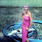 """drax """"pool me"""" (2010-08-11 22:22:23) komentarzy: 38, ostatni: fajne"""