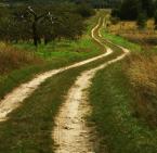 """asiasido """"krętą ścieżką"""" (2010-08-16 10:05:24) komentarzy: 9, ostatni: ładnie"""