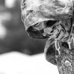 """marcinmgp """"death"""" (2010-09-05 22:08:56) komentarzy: 0, ostatni:"""