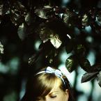 """justyna-sin """"a sorta fairytale..."""" (2010-09-05 23:21:21) komentarzy: 12, ostatni: fajne"""