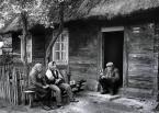 """Zbigniew Woźniak """"Po żniwach"""" (2010-09-14 20:02:15) komentarzy: 144, ostatni: finezja...!!!"""