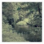 """Senn Silvaar """"***"""" (2010-09-18 18:44:30) komentarzy: 1, ostatni: Uwielbiam ten efekt. Puszysta jak snieg przyroda........."""