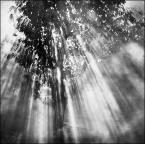 """epigon """"***"""" (2010-10-03 21:15:45) komentarzy: 23, ostatni: pięknie polizane światełkiem"""