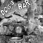 """borQT """"dogs bar"""" (2010-10-08 17:33:11) komentarzy: 1, ostatni: Możliwość zapicia jest :)"""