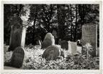 """kazan48 """"Cmentarz żydowski - macewy"""" (2010-10-14 12:46:11) komentarzy: 5, ostatni: Warte zatrzymania i pokazania,tonacja podkreśla klimat"""