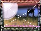 """sacio """"Dwie wazki do mety lecace lato konczace"""" (2010-10-16 00:11:47) komentarzy: 11, ostatni: miszczostwo :)"""