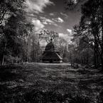 """Przemek_Turzyniecki """"Ulucz"""" (2010-10-22 14:50:07) komentarzy: 9, ostatni: bdb kadr"""
