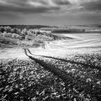 """Bartek Zaborowski """"II"""" (2010-10-26 22:05:14) komentarzy: 11, ostatni: Pobielały pola i drzewa. Zima?"""