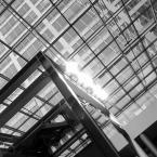 """Zeny """"Komórkowe 02"""" (2010-10-30 17:15:35) komentarzy: 7, ostatni: Dzięki!"""
