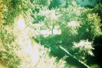 """hunting_bears """""""" (2010-11-04 13:09:33) komentarzy: 2, ostatni: ambitne/wybitne/genialne .... och"""