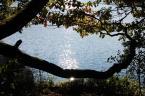 """paws """"jesiennie"""" (2010-11-06 19:51:36) komentarzy: 1, ostatni: nie mow nic...zabawa trwa..swiat sie kreci a w nim ja..........nie patrzac na aspekty techniczne ..jest pieknie po prostu,,myle,ze na tym fotografia sie opiera,,,wszystko jedno jak..ale pieknie ,,klimatycznie..."""