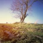 """irmi """""""" (2010-11-22 23:38:05) komentarzy: 6, ostatni: pięknie..."""