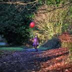 """Meller """"Czerwony Balonik.."""" (2010-12-01 14:39:18) komentarzy: 27, ostatni: Angielskie ogrody."""