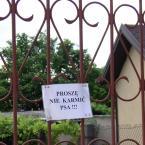 """miastokielce """"Ul. Małopolska Kielce"""" (2010-12-05 22:27:54) komentarzy: 4, ostatni: Ranyy, jak w ZOO. Komentarz Kazkar powala;)"""