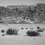 """Paddinka """""""" (2010-12-10 13:57:15) komentarzy: 4, ostatni: bo to żwirowa pustynia jest"""