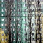 """R o c h o """"gniazda"""" (2010-12-16 16:12:41) komentarzy: 13, ostatni: bardzo ładnie skomponowane... kadr z blokowiska, a jaki ładny!"""