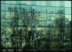 """BALTORO """"pejzaż zielony"""" (2011-01-03 16:59:47) komentarzy: 3, ostatni: Dobre!"""