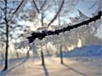 """depreska """"lodowe listki"""" (2011-01-04 15:02:27) komentarzy: 1, ostatni: SUPER. BARDZO, BARDZO MI SIE PODOBA. Bym wstawił 10 ale jeszcze nie moge :( Super"""