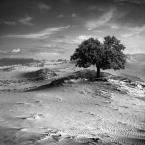 "klimat """" (2011-01-04 18:57:36) komentarzy: 39, ostatni: 5-"