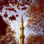 """weisfeldt """"jesień."""" (2011-01-08 00:08:32) komentarzy: 11, ostatni: (:"""