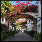 """Mnieteq """"Puerto de Mogan"""" (2011-01-19 10:43:02) komentarzy: 4, ostatni: nic się nie zmieniło, nadal tak ładnie tam jest :)"""