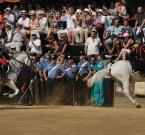 """Maciej Konopka """"Carabinieri - prezentcja"""" (2011-01-27 21:23:41) komentarzy: 28, ostatni: Fajne dwa kawałki konia!"""