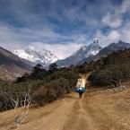 """Trollek """"Way to Destiny"""" (2011-01-28 14:52:44) komentarzy: 42, ostatni: Cudowne widoki przed Tobą:)"""
