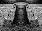 """Jacek 55 """"Symetria"""" (2011-01-30 12:41:05) komentarzy: 2, ostatni: +/"""